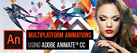 Rich Media Communication using Adobe Flash