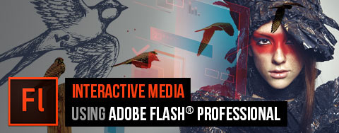 Rich Media Communication using Adobe Flash